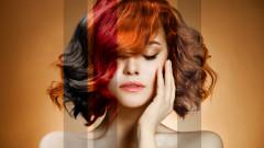 Каква е връзката между гъбите и боята за коса