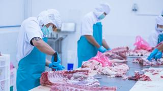 Русия ограничава доставките на свинско месо от България и Словакия