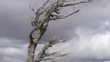 Ураганен вятър със 122 км/ч удари Сливен