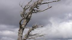 Жълт код в 10 области заради бурен вятър