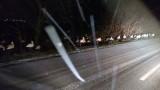 Пазете щъркелите, нощуват на земята, зоват свидетели чрез Фейсбук
