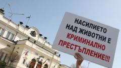 """""""Аз съм с куче"""" и пред парламента"""
