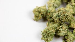 Масово арестуват за под 1 грам марихуана