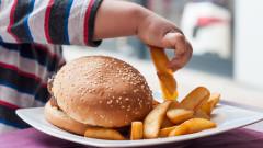 Затлъстяването тежи на образованието, производителността и икономиката