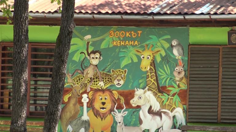 Международна комисия проверява условията в зоопарковете в Хасково и Димитровград,