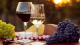 Със 17% по-малко ще е производството на вино във Франция тази година