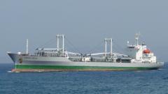Пирати отвлякоха трима руски моряци край Нигерия