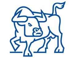 Победа за биковете на БФБ