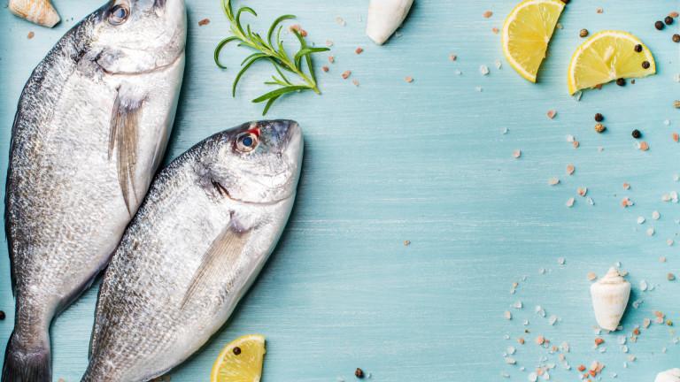 Гърция ударно купува риба от Турция