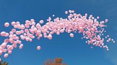 Розови балони напомниха на жените да се прегледат при мамолог