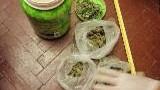 Боеприпаси и наркотици са открити в частен имот в Кюстендил