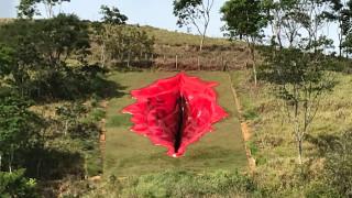 Вагината, която Бразилия не успя да скрие от света