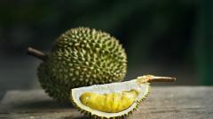 Миризлив плод евакуира част от австралийски университет