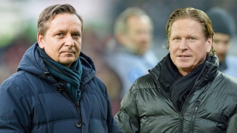Маркус Гиздол е новият старши треньор на Кьолн. Той заменя
