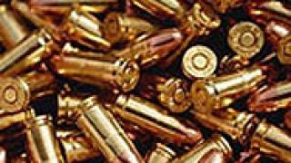 155 патрона иззеха полицаи от частен дом в Петрич