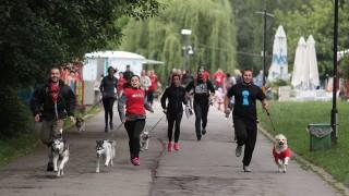 Маратон за кучета ще се проведе във Варна този уикенд