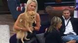 Кучето на Еделвайс маркира с урина дрехите на Станка Златева
