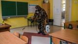 Нови черни COVID рекорди в Унгария и Полша
