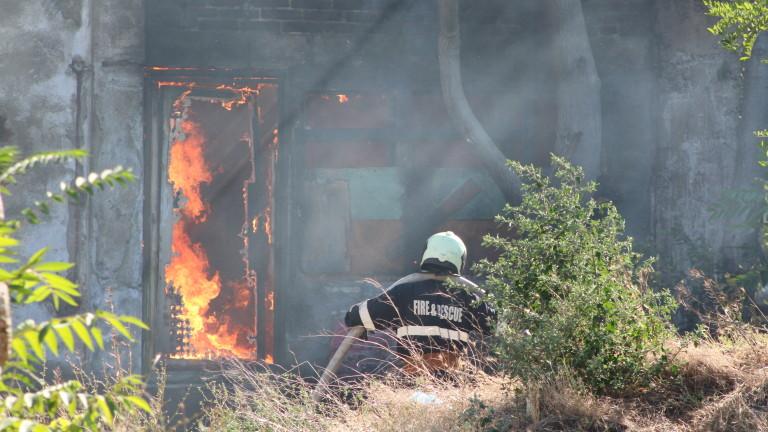 Фойерверки предизвикаха пожар в курорт Елените