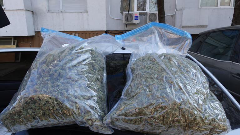 Снимка: Полицията задържа над 16 500 дози марихуана в Шумен