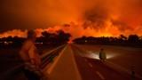 1000 пожарникари се борят с горски пожари в Португалия