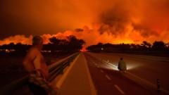 700 пожарникари гасят силен горски пожар в Португалия
