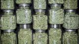 Исторически връх - 60% от американците подкрепят легализация на марихуаната