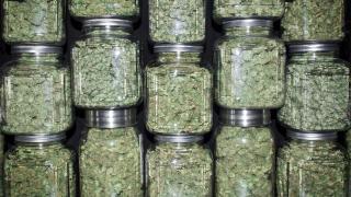 Аризона, Ню Джърси и Южна Дакота легализираха марихуаната за развлечение