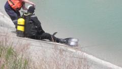 Мъж се удави в река Марица в Пловдив