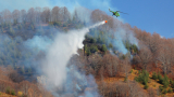 Над 70 пожарникари гасят огнената стихия в Свиленградско
