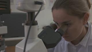 НСИ: Намаляват заетите с научна и развойна дейност