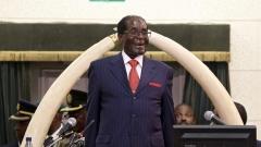 СЗО преосмисля поканата си към Робърт Мугабе
