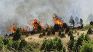 Изпратиха втори хеликоптер да гаси пожара край Кресна