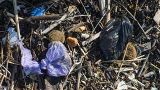 Замърсяването с микропластмаси е абсолютно навсякъде на планетата