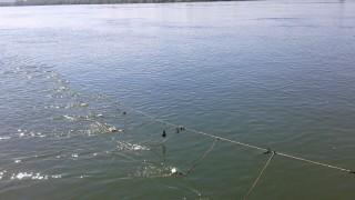 Първите проби отчетоха чиста морска вода край Варна
