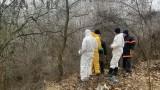 Във Враца разследват кой е изхвърлил животински отпадъци на незаконно сметище