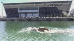 Голям международен плувен маратон предстои в Бургас в края на месеца