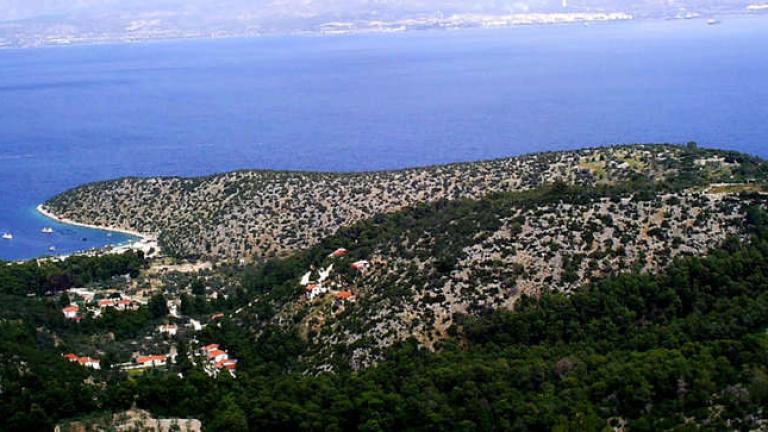 Микробуси возят нерегламентирано пътници на еднодневни екскурзии в Гърция