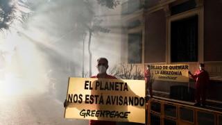 Отново се увеличава обезлесяването на Амазонка