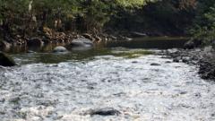 Спешно изпомпват водоема, замърсяващ река Луда Яна