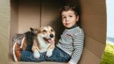 Кучетата, децата и как домашните любимци им помагат да учат