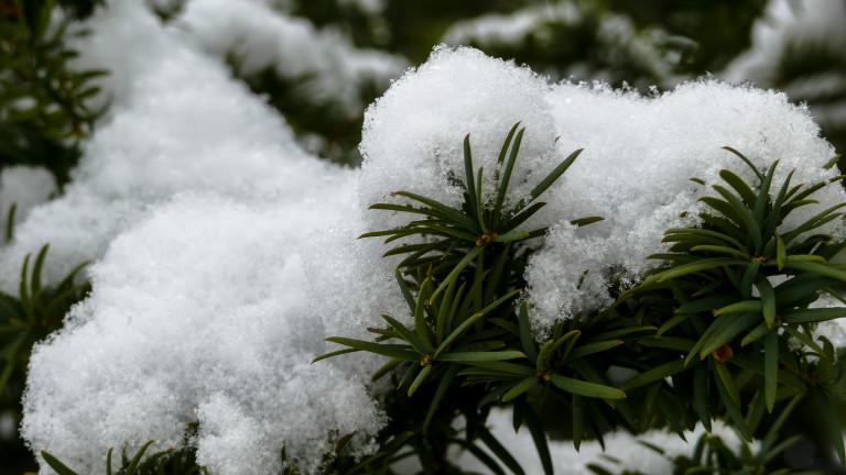 Изпращаме годината с дъжд и сняг