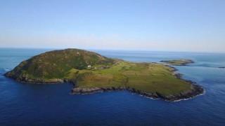 Колко плащат, за да гледаме тюлени на самотен остров