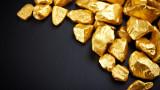 Треска за злато обхвана инвеститорите