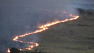 Повече от 3 часа гасиха 5 хил. дка полски пожар в Русенско