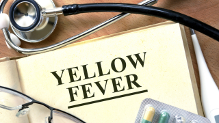 Епидемията от смъртоносната жълта треска може да се разпространи по целия свят