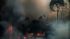Макрон и Меркел зоват Г-7 за Амазонка: Домът ни гори