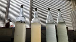 Суровата вода - полезна или опасна тенденция