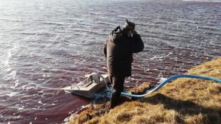 Екокатастрофата в Норилск достигна до езерото Пясино