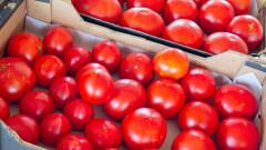 Спряхме на границата 5 тона домати с пестициди от Турция